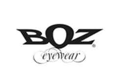 2017_boz